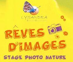 Stage photo nature spécial jeunes